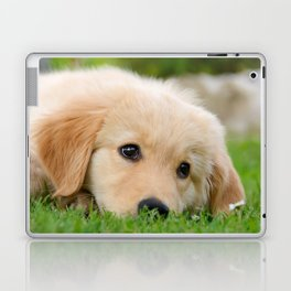 Golden Retriever puppy, cute dog Laptop & iPad Skin