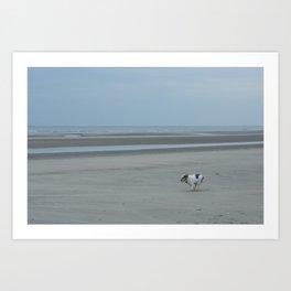 dog running on the beach Art Print