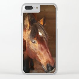 horse collection. in box Clear iPhone Case