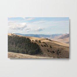 Montana  Gold Metal Print
