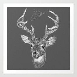 deer - cervo - cerf - ciervo Art Print