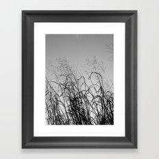 CALLIGRAPHY Framed Art Print