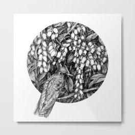 Hummingbird in flowers Metal Print