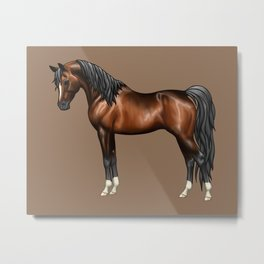Dark Bay Arabian Horse with 4 White Socks Metal Print