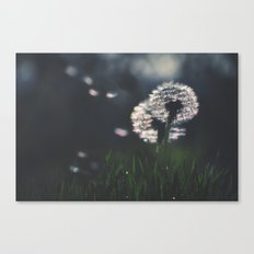 whispers in the wind Canvas Print