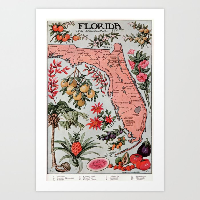 Print Map Of Florida.Vintage Map Of Florida 1917 Art Print By Bravuramedia Society6