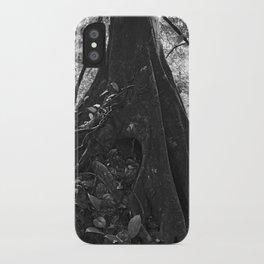 Foundation No. 2 iPhone Case