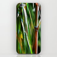 mother iPhone & iPod Skins featuring Mother by Robin Curtiss