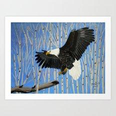 Bald Eagle-3 Art Print