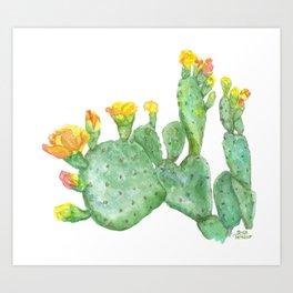Prickly Pear Cactus Watercolor Art Print