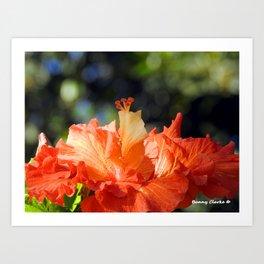 Flamingo Hibiscus Art Print