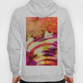 fractal mandelbrot art wallpaper Hoody