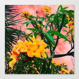 Plumeria in Storm Canvas Print