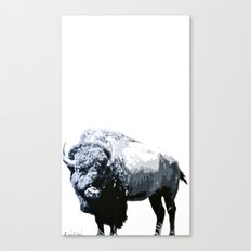 Buff Canvas Print