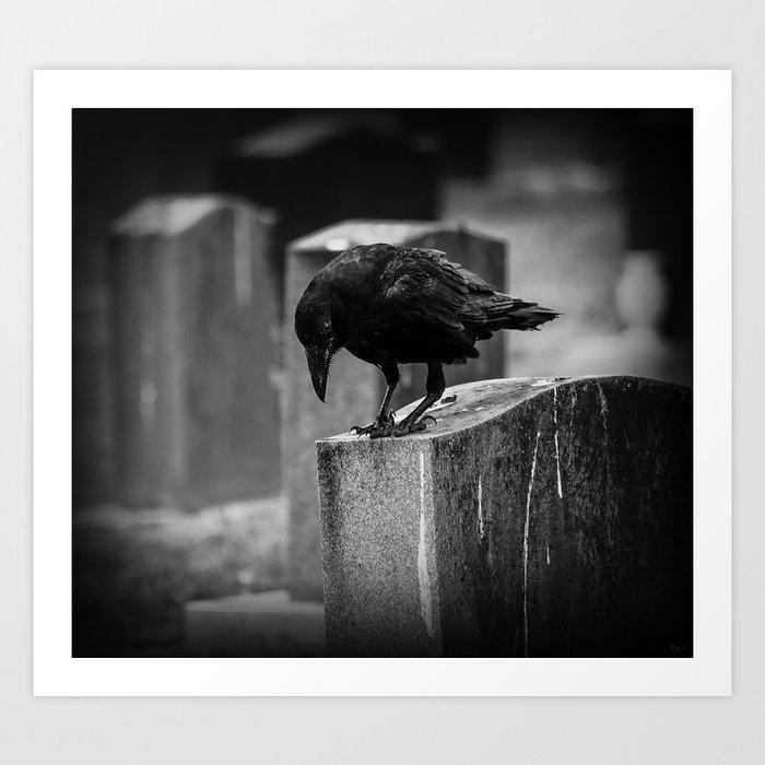 Cemetery Crow Art Print
