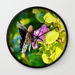 Beautiful Pipevine Swallowtale Butterfly Wall Clock