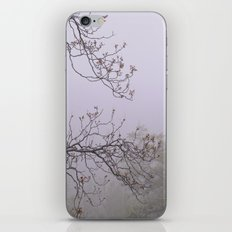 Mountain trees. Into the foggy woods iPhone & iPod Skin