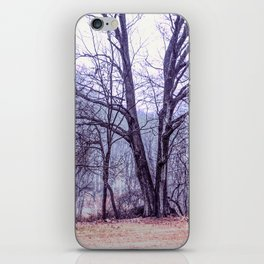 Landscape at Old Kennett Meetinghouse iPhone Skin