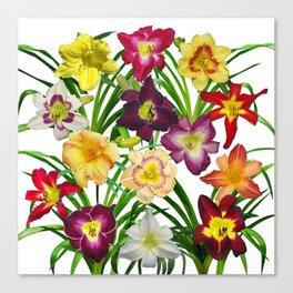 Display of daylilies I Canvas Print