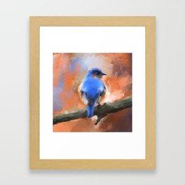 My Little Bluebird Framed Art Print