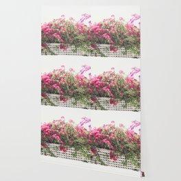 California Summer Flowers Wallpaper