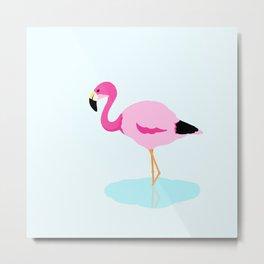 Andean flamingo Metal Print
