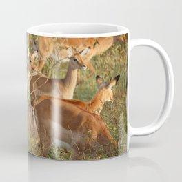 DEER EATING GRASS IN THE MORNING Coffee Mug