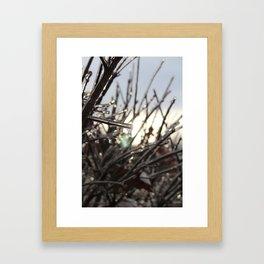 Ice drops Framed Art Print
