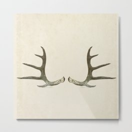 Deer Antlers on Vintage Paper Metal Print