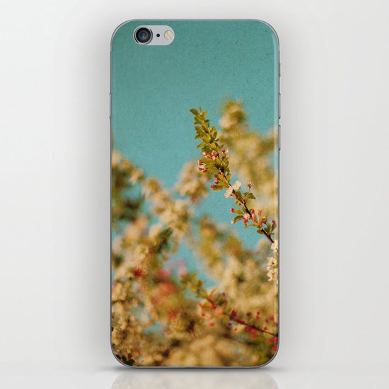 Darling Buds of May iPhone & iPod Skin