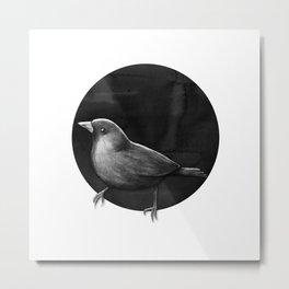 Polka Perch Solo Metal Print