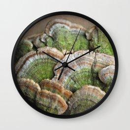 Fungi Wall Clock