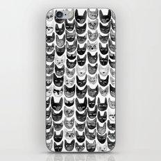 Black & Gray Cats iPhone & iPod Skin