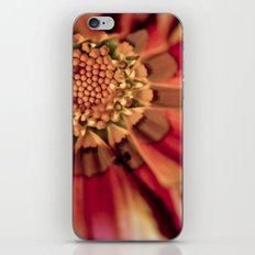 Centralized iPhone & iPod Skin