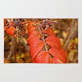 autumnal leaves Rug