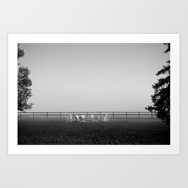 Another Misty Morning Art Print