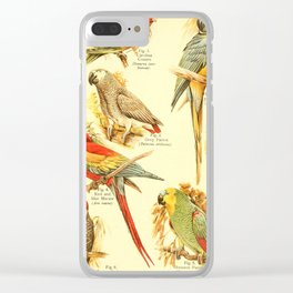 William Playne Pycraft - A Book of Birds (1908) - Plate 18: Parrots and Relatives Clear iPhone Case