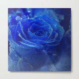Blue Rose and Sky Metal Print