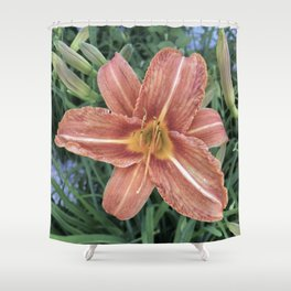 Orange Day Lily Flower Shower Curtain