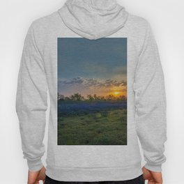 Daybreak In The Land Of Bluebonnets Hoody