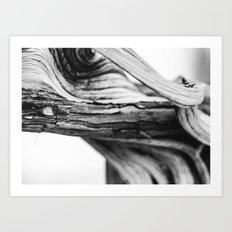 Twist Art Print
