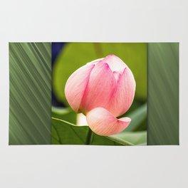 Lotus dream/Lotustraum Rug