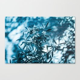 Olive tree leaves silhouette summer blue Canvas Print