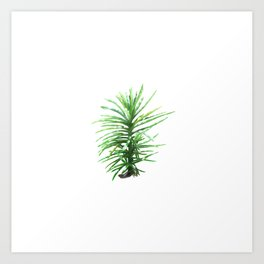 Small tree Art Print