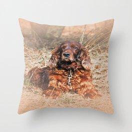 Red setter Throw Pillow