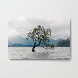 Wanaka tree Metal Print