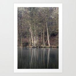 Winter at Cannop Ponds Art Print