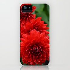 Fresh Rain Drops - Red Dahlia iPhone SE Slim Case