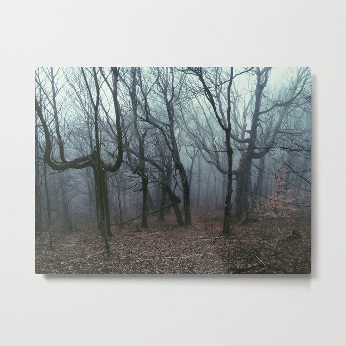 Foggy Max Patch Woods Metal Print