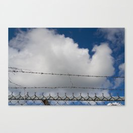 Fluffy and Sharp Canvas Print